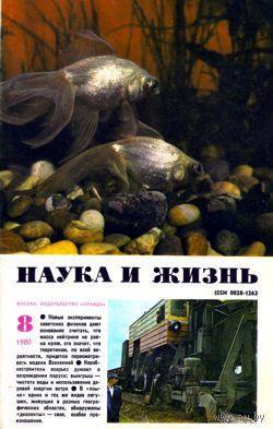 """Журнал """"Наука и жизнь"""", 1980, #8"""