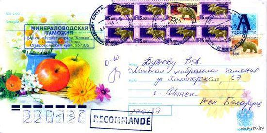 """Россия 2008. Конверт, прошедший почту """"Натюрморт. Яблоки"""""""