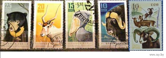 ГДР 1985 Фауна ОХОТА
