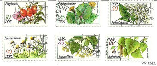 Флора. Цветы. Серия 6 марок 1978 Германия