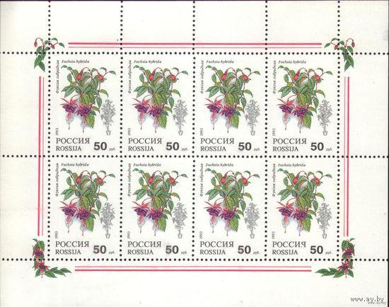 Малый лист 1993 год Россия Комнатные растения/ 1