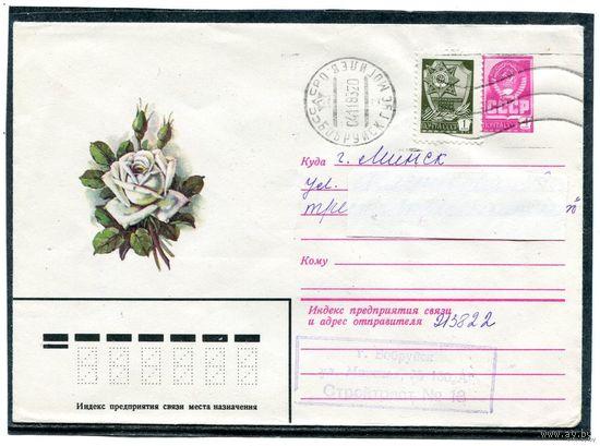 Цветок. Роза. Конверт прошедший почту. 1979