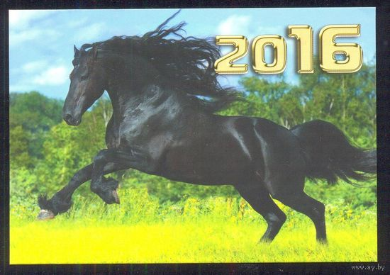 Календарик 2016 лошадь