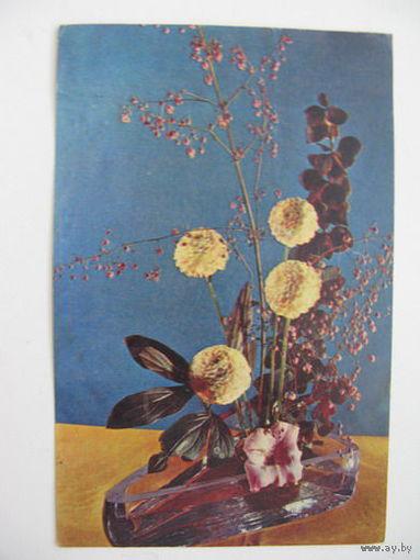 Цветы  1969г.