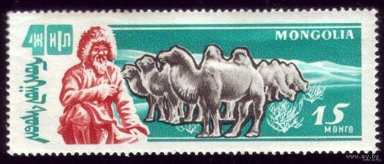 1 марка 1961 год Монголия Чабан