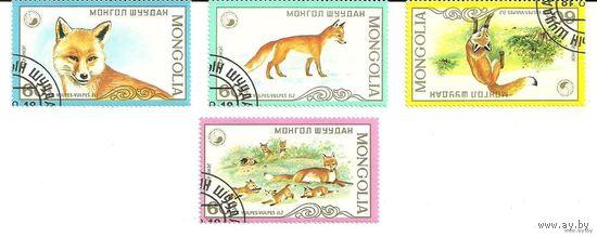 Фауна. Лисы. Серия 4 марки 1982 Монголия