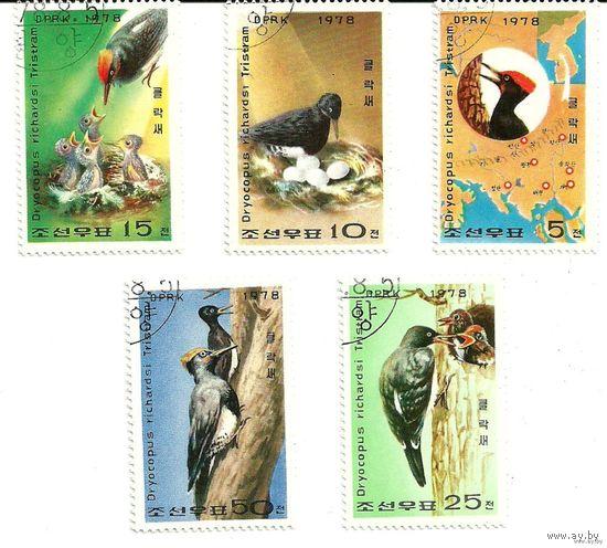 Фауна. Птицы, дятлы. КНДР 1978 г. (Корея)