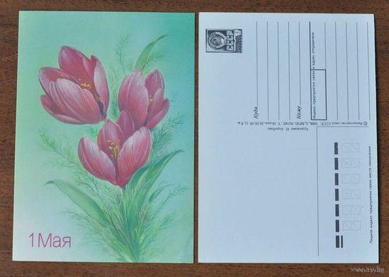 """Почтовая карточка """" 1 Мая """" 1988г."""