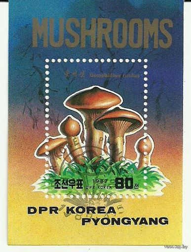 Флора. Грибы. КНДР 1987 г. (Корея) Серия + блок