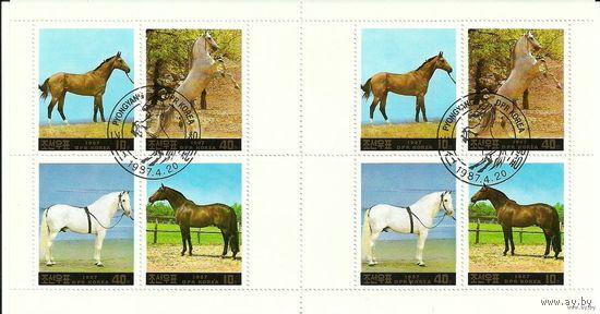 Лошади. Фауна 1987 Корея. 2 сцепки по 4 марки КНДР