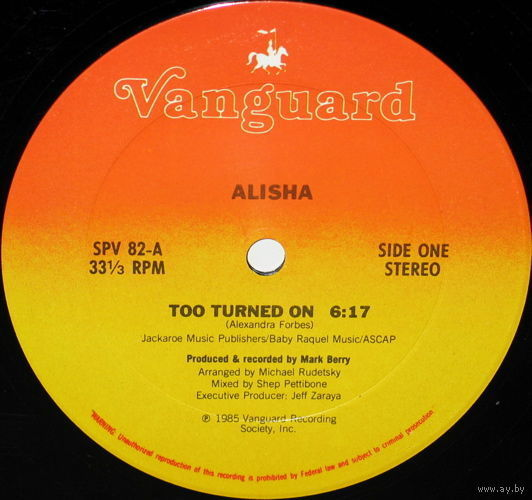 "12"" Alisha - Too Turned On (1985) Freestyle, Electro"