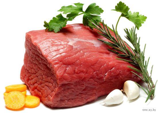 Курсовая Эффективность производства говядины в организации и  Курсовая Эффективность производства говядины в организации и пути ее повышения на примере Экономика в